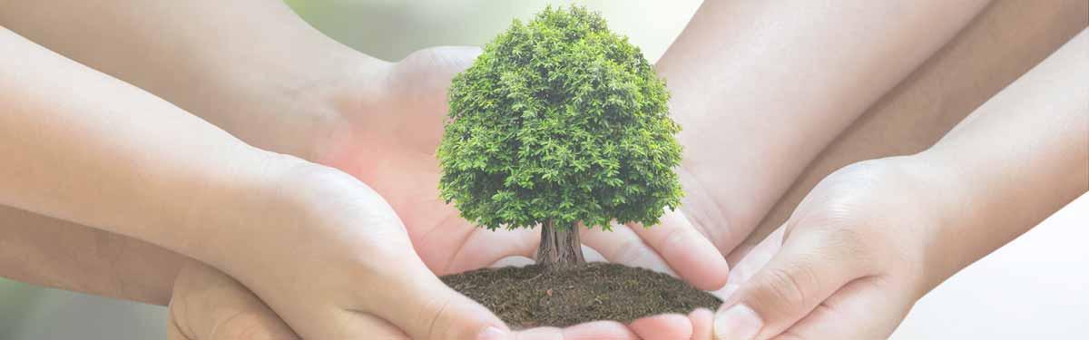 paack compromiso con sostenibilidad e innovacion